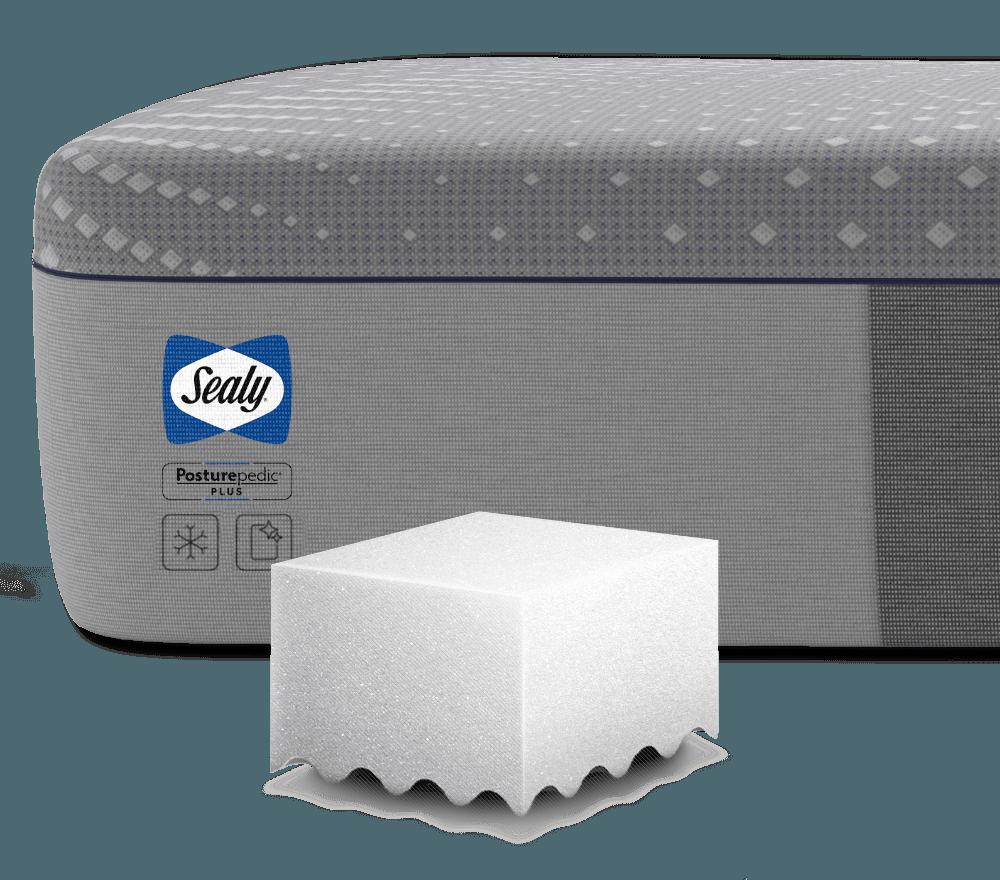 Sealy Foam