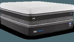 Sealy Hybrid Premium on Sealy Conform Premium Mattress